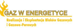 Gaz w Energetyce 2020