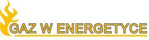 Gaz w Energetyce 2021